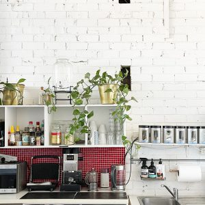 View of kitchen with cupboards on walls topped by trailing ivy and with a red tiled splash back